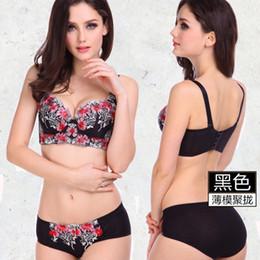 Wholesale Pink Bra Lingerie - Wholesale-Women bra set 34-40 A-D cup push up bra set 6 colors underwear women sexy bra set women lingerie plus size bra and panty set