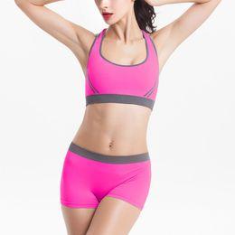 Wholesale Training Bra Sizes - Wholesale-Women Underwear Sexy Sports Underwear Women Seamless Wireless Bra Set+Shorts Panties Gym Running Training Lingerie 9 Color Q2469