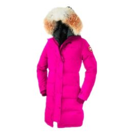 Wholesale Winter Coat D - Winter outdoor Canada thickening warm cold cold cold goose d own jacket windproof jacket coat female
