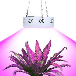 Wholesale Mini Plant Grow Light - New LED Grow Light 150W Mini UFO LED Plant Grow Light Sanan Emitting Diode Black White Brightness with EU US Plug <$18 no tracking