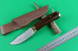 Wholesale Coolest Damascus Knife - New Damascus Fix blade hunting knife 57HRC Shadow wood handle Survial straight knife with leather sheath Cool knives
