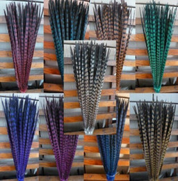 Wholesale Wedding Pheasant Feathers - Wholesale Custom colors pheasant tail feathers jewelry craft hat mask feather hair extention 100pcs 20-22inch   50-55cm SJW-0001