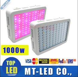 Wholesale Double Downlights - High Cost-effective Recommeded Double Chips 1000W LED Grow Light Panel downlights with 9-band Full Spectrum for Hydroponic Systems