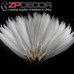 Wholesale 35 Inch Pheasant Feathers - Retail and Wholesale from ZPDECOR 35-40cm(14-16 inch) White Silver Pheasant Tail Feathers for Decoration Performance