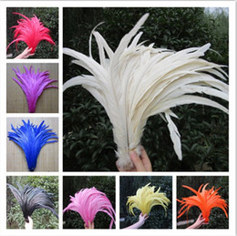 Wholesale Chicken Feathers - Free shipping Wholesale 100 pcs Pretty Natural Rooster Feathers 12-14 inches   30-35 cm Wedding decoration diy