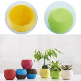 Wholesale Circular Decoration - L size 5 colors circular Mini flowerpot fashion Plastic Flowerpot Rainbow flowerpot Home office decoration supplies IA652
