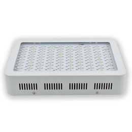 Wholesale Greenhouse Veg - 1000W Double Chips LED Grow Light Full Spectrum Growing Lamp Panel for Hydroponics Indoor Greenhouse Plants Veg Flowering Growth