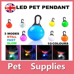 Wholesale Vest Colour - Dog Cat LED Safety Night Light Flashing Colour Buckle Collar Pet Luminous Bright With 10 Colors