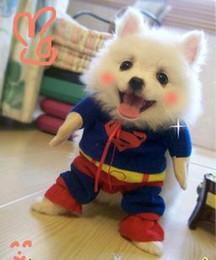 Wholesale Dog Clothes Superman Xl - Pet Costumes Dog Clothes Superman cloak Size XS S M L XL free ship WY136 50p