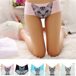 Wholesale Thong Panties For Girls - Wholesale-Sexy Underwear 3D Cat Printing Pussy Briefs Girl Cute Panties Boyshorts Comfortable Sex Thongs G-string Sexy Lingerie For Female