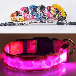 2019 collari per cani usb Collare a forma di collare in nylon luminoso ricaricabile con collare a led ricaricabile con collare a forma di zanzara sconti collari per cani usb
