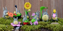 Wholesale Doll More - Best gift Moss micro - landscape ornaments Dragoncat dolls creative crafts more meat plants DIY HM012 mix order as your needs