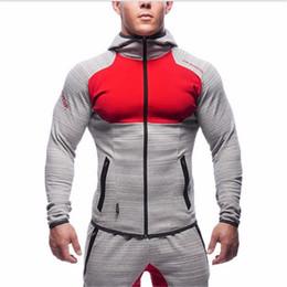 Wholesale Mens Cotton Lapel Shirts - Mens Bodybuilding Gym Hoodies Brand-clothing Workout Shirts Hooded Suits Tracksuit Men Chandal Hombre Gorilla wear Animal
