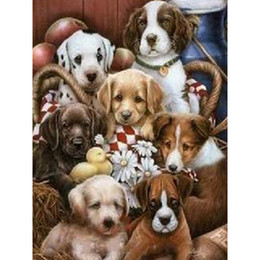 Wholesale paint safe - Needle resin square DIY 5D Diamond painting DMC kits full diamond paintings animal dogs patterns craft 30x40cm HWB-647