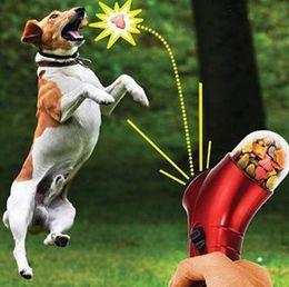 Wholesale Agility Toys - 100pcs Pet Treat Launcher Pets Food Spray Gun Pet Feeding Catapult Gun Dogs Cats Outdoor Interactive Toy
