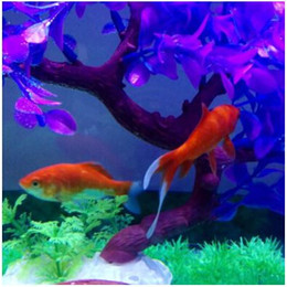 Wholesale Magical Fishes - The new 2016 Magical novel Robot Fish Activated Turbot Electronic Pets Toys Electric Robofish Swimming Clownfish