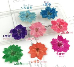Wholesale Displays For Necklaces Pendants - 100pcs Mini Pressed Dried Gaura Lindheimeri Flower For Wedding Party Home Pendant Necklace Craft DIY Accessories