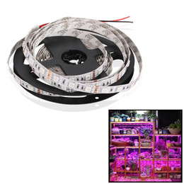 5050 SMD Grow LED Flexible Strip Tape Light 4: 1 5: 1 acuario Invernadero Planta hidropónica Lámpara creciente 60led / m desde fabricantes