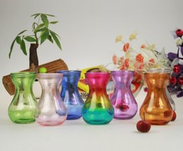 Wholesale Glass Container Vases - Colorful glass vase aquatic plant flower pot water hyacinth glass container camellia flower vase free shipping