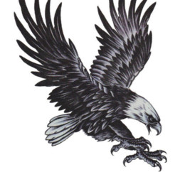Wholesale Tattoo Arm Covers - Free shipping 2015 Tattoos fake tattoo spread eagles chest back covering scar on the arm shawl tattoos wholesale