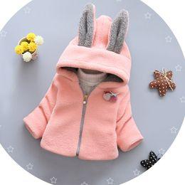 Wholesale Cartoon Girls Beautiful Clothes - 2016 new girl autumn coat beautiful baby cartoon hoodie 80-85-90-100CM children fashion warm clothes free shipping 4pcs D1