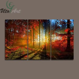 Wholesale Rooms Painted Red - 3 Panel Canvas Print Painting Cuadros De Lienzo Forest And Sunset Sunlight Autumn Red Wall Art Home Decoration Living Room