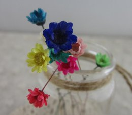 Wholesale Blue Epoxy Resin - 100pcs Mini Pressed Dried Daisy Flower For Epoxy Resin Pendant Necklace Jewelry Making Craft DIY Accessories