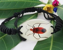 Wholesale Amber Resin Insect - Natural hand-made insect amber night light bracelet men's gift accessories
