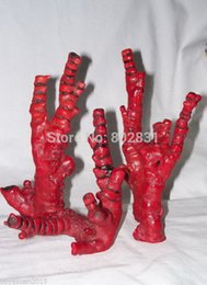Wholesale Live Corals Wholesale - Wholesale 4 Natural Blood Red Coral Branch 5-7 inch