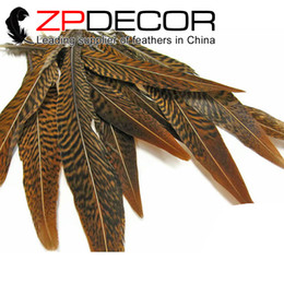 Wholesale Wholesale Feathers 15 Inches - Retail and Wholesale from ZPDECOR Hand Sorting 15-20cm(6-8 inch) Natural Cheap Sale Golden Pheasant Feathers