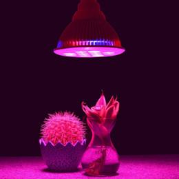 2019 12w ha portato a crescere la lampadina La lampadina della pianta di E27 12W LED idroponica coltiva la lampadina per la ricerca calda della serra del giardino 12w ha portato a crescere la lampadina economici
