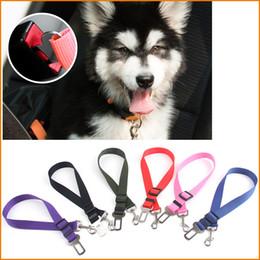 2019 óculos de cão de plástico 6 Cores Cat Dog Pet Cinto de Segurança Cinto de segurança Ajustável Pet Filhote de Cachorro Filhote de Cachorro Do Cão Do Cão de Estimação Cinto De Chumbo Chumbo para Cães