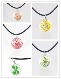 Wholesale Clover Flower Necklace - Fashion Crystal Glass Ball Clover Necklace Long Strip Leather Chain Dried Flowers Pendant Necklaces Women 2016 Jewelry