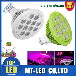 Wholesale Led Bulb Blue Red High - factory sell led E27 real 12W 24w LED Plant Grow high power par Light Bulb Indoor Plants Growth grow lights price with CE ROHS certified