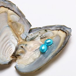 Wholesale Oyster Lights - 10PCS 7-8mm AAA Grade Light Blue Double Rice Drop Freshwater Pearl Oyster The Mother Of Pearl Vacuum Packing