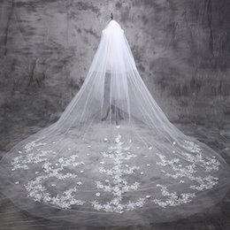 Wholesale 5m Wedding Veil - 2016 Luxury Long Beige Wedding Veil Retro Lace Appliques Bridal Veils Flower Veils 5m One Layer
