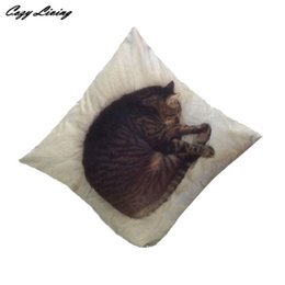 Wholesale Sleep Pillow Case - Wholesale- Pillow Cases 45*45CM Sleep Cat Pillow Cases Linen Blend Pillow Cover 3D Cartoon Printed Square Pillowcase Wholesales D21