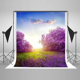 Wholesale Beautiful Green Grass - Kate 5x7ft Beautiful Lavender Background Blue Sky Green Grass Backdrop for Children Photography Photo Backdrops J03888