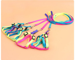 Wholesale Kitten Cat Harness Lead - Portable Pet Puppy Leash Small Dog Cat Rabbit Kitten Nylon Harness Collar Training Lead Adjustable Rainbow Rope 1.0*120CM