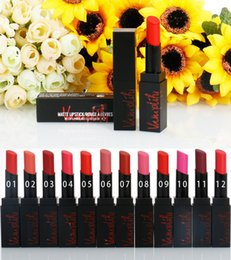 Wholesale famous lips - Famous Brands Matte Lipstick Rouge a Levres Lipsticks 12 Colors 3g Matte Lip Stick Makeup vs Nyx Butter Lipsticks Lip Gloss