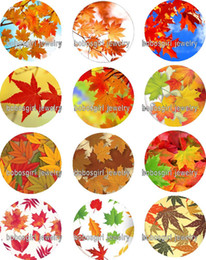 Wholesale Maple Leaf Charms Wholesale - Free shipping Maple Leaf glass Snap button Jewelry Charm Popper for Snap Jewelry good quality 12pcs   lot Gl340 jewelry making DIY