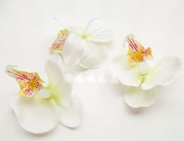 Wholesale Shoes Artificial Flowers - Artificial Silk Moth Orchid Flower Head Diy Hat Shoes Garment Decoration Flowers 6pcs lot 027017019