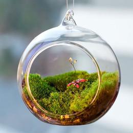 Wholesale Transparent Vases - 8cm Transparent Ball Globe Shape Clear Hanging Glass Vase Flower Plants Terrarium Container Landscape DIY Wedding Home Decor
