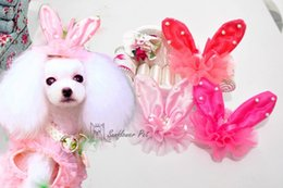 Wholesale Dog Hair Jewelry - Pet Grooming Accessories Pet dogs cats teddy than headdress jewelry high quality rabbit ear hair clips