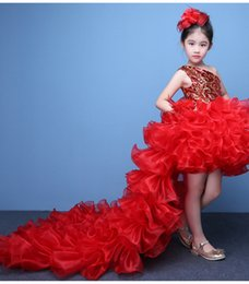 Wholesale Princess Pompon Dress - Free Shipping High Quality Children Catwalk Performance Dress Princess Pompon Skirt Girls Party Beauty Ball Dress Up Evening Dresses