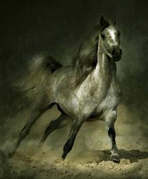 Umrahmt von Arabian Horse Cantering in Landschaft, reine Handcraft abstrakte Tierkunst Ölgemälde auf Qualität Leinwand Multi Größen, kostenloser Versand von Fabrikanten