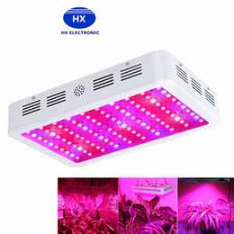 Wholesale canada led lighting - New arrive 600W 800W 1000W LED Grow Light Kit Free Power cord 10W Hydroponic Grow Lamp Panel DHL USA UK Canada Germany