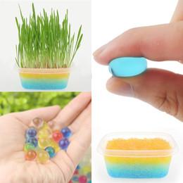 Grandi piante da giardino online-Soilless Gardening Crystal Fango Crystal Soil Big Water Beads Ball per fiori Piante Decorazione della casa IB367