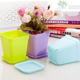 Wholesale Mini Vases - Hot Colorful Bonsai Planters Plastic Table Mini Succulents Plant Pots and Plate Gardening Vase Square Flower Pot