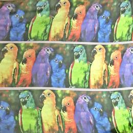 Wholesale Digital Printed Silk Chiffon Fabric - dpc-33005 Gorgeous Culorful Parrot100% Pure Silk Digital Printed Silk Chiffon Fabric 6 momme Sheer Designer Material Meter